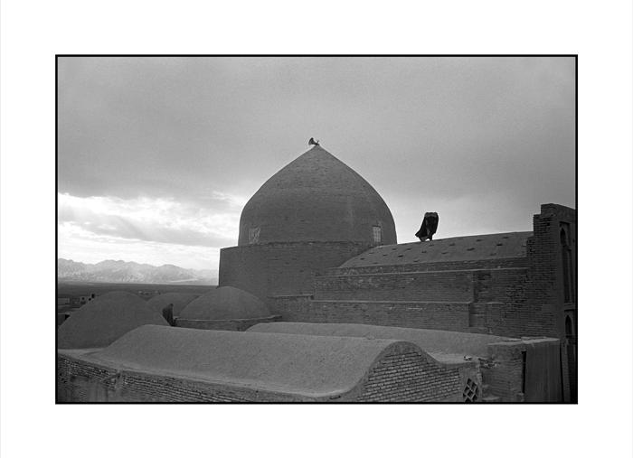 Desert Architecture
